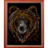 Медведь цветной